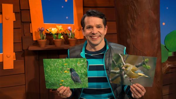 Juri und Vogelbilder | Rechte: KiKA/Josefine Liesfeld