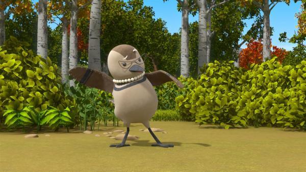Eine verletzte Vogeldame scheint die Freunde auf ihre Fährte locken zu wollen. | Rechte: BR/Enpop Co. Ltd.