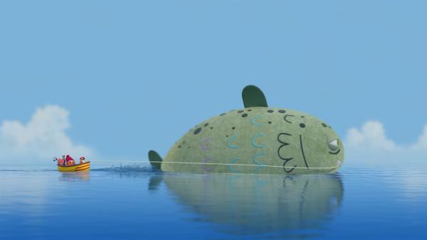 Gill, den legendären Riesenfisch, gibt es wirklich und er ist sogar sehr freundlich! | Rechte: NDR/JAM Media