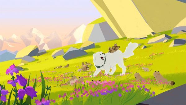 Belle hat viel Spaß mit den Murmeltieren. | Rechte: ZDF/Gaumont Animation/PP Animation III Inc.