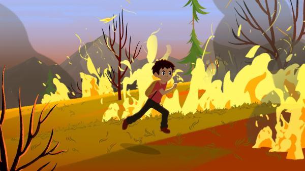 In den Bergen ist ein Feuer ausgebrochen. | Rechte: ZDF/Gaumont Animation/PP Animation III Inc.