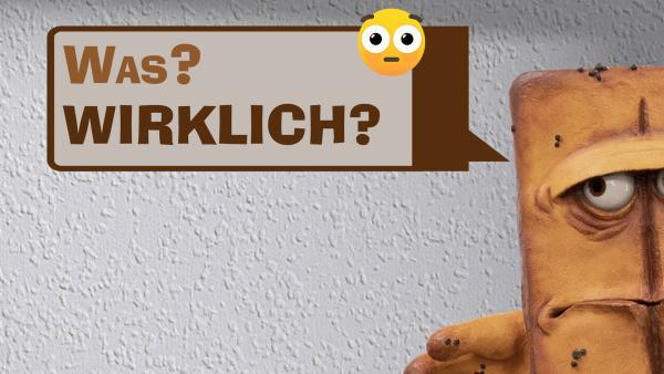 Wie bitte? 1 | Rechte: KiKA/Colourbox.de