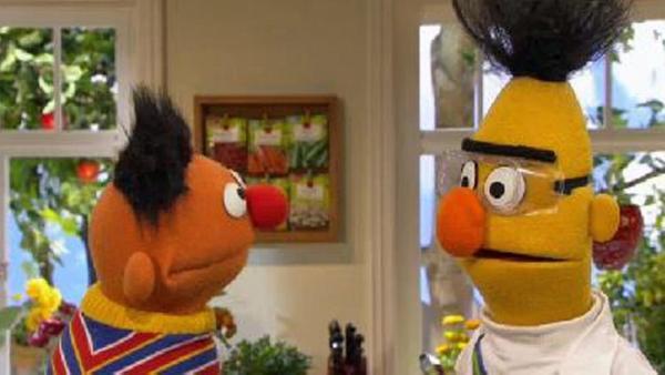 Bert erklärt Elektrostatik.   Rechte: NDR Foto: screenshot