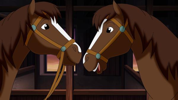Die Pferde Ella und Elisa sehen sich zum Verwechseln ähnlich. Kein Wunder, sie sind Zwillinge. | Rechte: ZDF/Kiddinx - Berlin