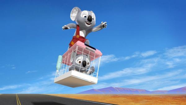 Unterwegs rettet Blinky unverhofft das Koala-Mädchen Katie, die sich längst an die Bequemlichkeiten ihres Zoolebens gewöhnt hat. | Rechte: KiKA/Assemblage Entertainment/Flying Bark Productions/Telegael