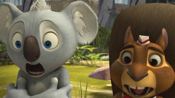 Mit großem Schrecken bekommen Blinky und Eddie mit, wie Jacko von Menschen gefangen wird. | Rechte: KiKA/Studio 100 Media / Flying Bark