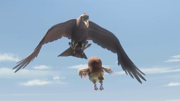 Kaum kann Whoogle fliegen, soll er einen Adler ablenken, der ihn, Blinky und Jacko angreifen will.   | Rechte: KiKA/Studio 100 Media / Flying Bark