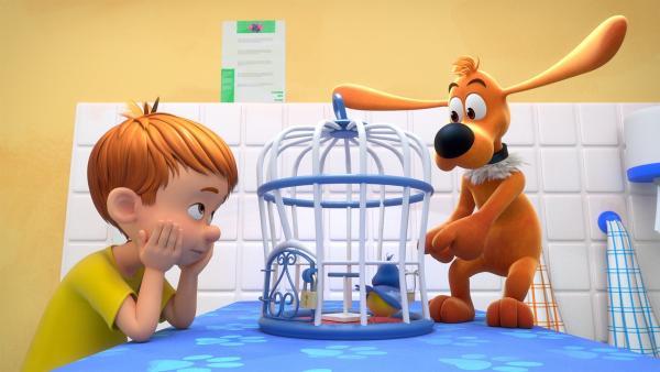 Bobby und Bill helfen dem Tierarzt. | Rechte: NDR/Studio Boule et Bill