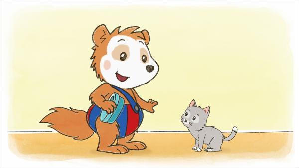 Ob Bobo und die Katze Minzi Freunde werden? | Rechte: WDR/JEP ANIMATION