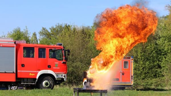 Explosiv wird es, wenn gefrorene Pommes in heißes Fett fallen. | Rechte: ZDF/Sylvia Wolf