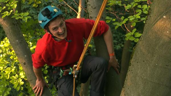 Vom Urwald lernen    Checker Julian klettert auf einen riesigen Baum.   Bild: BR   megaherz gmbh - Pius Neumaier   Rechte: BR   megaherz gmbh - Pius Neumaier