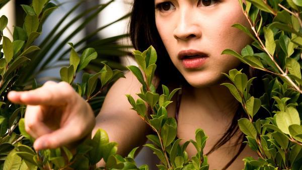 Kyra (Kimie Tsukakoshi) beobachtet aus einem Gebüsch, wie die magische Schattenwolke über den Sportplatz zieht. Ihre Aufgabe ist es, die Wolke wieder einzufangen. | Rechte: ZDF/Jonathan M. Shiff Productions/Screen Queensland