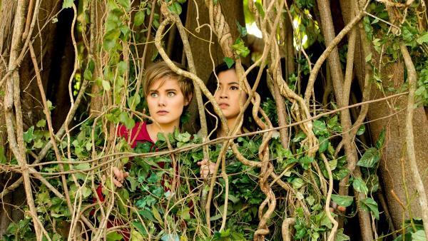 Imogen (Elizabeth Cullen links) und Kyra (Kimie Tsukakoshi rechts) haben den magischen Baum gefunden, sind aber von ihm gefangen worden, ehe sie ihn mit Zauberkraft beruhigen konnten. Nun müssen sie auf Hilfe warten.   Rechte: ZDF/Jonathan M. Shiff Productions/Screen Queensland