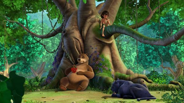 Balu (li.), Baghira (re.) und Mowgli (auf Baum) machen eine Rast. | Rechte: ZDF/DQ Entertainment