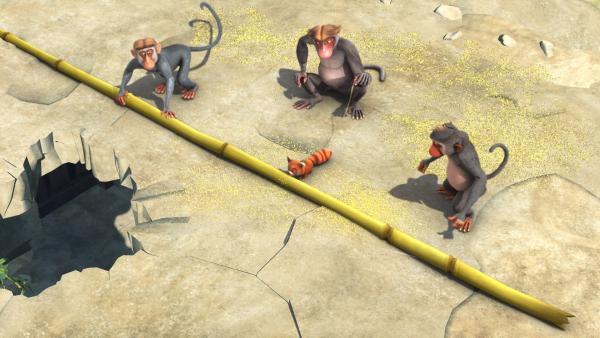 Ponya, die kleine rote Pandabärin, wird von den Affen gefangen gehalten und gezwungen, Bambusstäbe durchzuknabbern. | Rechte: ZDF/DQ Entertainment