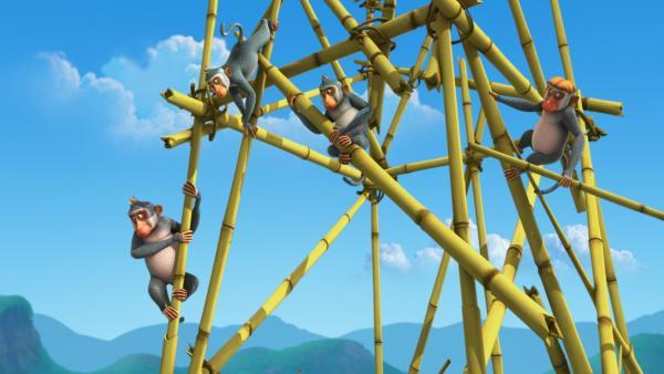 Die Affen bauen einen Bambusturm für Affenkönigin Mascha. Der soll bis zur Sonne reichen. | Rechte: ZDF/DQ Entertainment