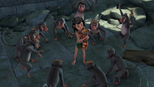 Mogli und Ponya, die kleine rote Pandabärin, wollten flüchten. Doch die Affenbande hat sie dabei erwischt und eingekreist. | Rechte: ZDF/DQ Entertainment