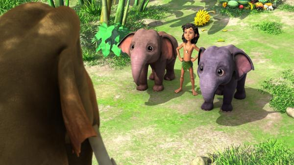 Hathi (v.), der Chef der Elefanten, beauftragt Mogli (m.) und seine Elefantenkinder Appu (l.) und Hita (r.), eine schöne reife Mango im Dschungel zu suchen und mitzubringen. | Rechte: ZDF/DQ Entertainment