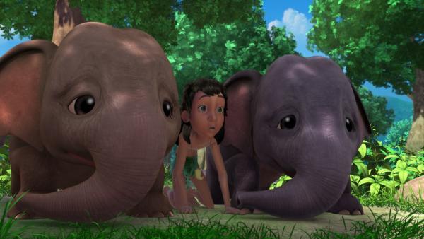 Mogli (m.) und die Elefantengeschwister Appu (l.) und Hita (r.) haben einen Baum gefunden, an dem noch Mangos hängen. Doch leider liegt Shir Khan darunter. | Rechte: ZDF/DQ Entertainment