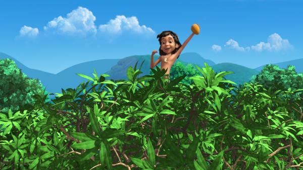 Mogli hat es geschafft, sich an Shir Khan vorbei zu schleichen und auf den Baum zu klettern. Dort hat er eine perfekte Mango gefunden. | Rechte: ZDF/DQ Entertainment