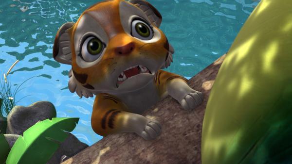 Chota, das Tigerjunge, möchte unbedingt die abgestürzte Sternschnuppe finden und berühren. Er macht sich auf den Weg zum Absturzort. | Rechte: ZDF/DQ Entertainment