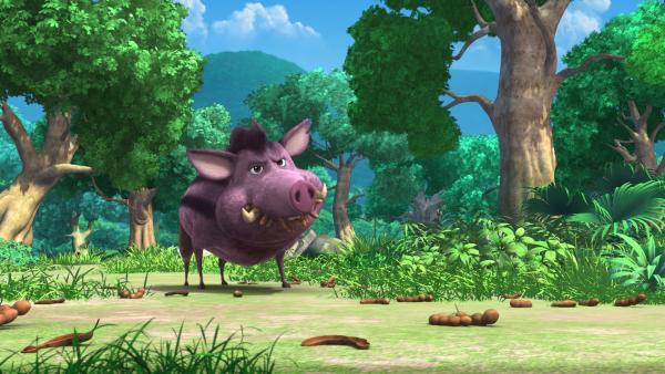 Rana, das Wildschwein liebt Tamarinden. Während er die köstlichen Früchte futtert, macht er komisch aussehende Bewegungen. | Rechte: ZDF/DQ Entertainment
