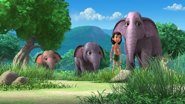 Mogli (2.v.r.) und die Elefantengeschwister warten zusammen mit der Elefantenmutter Gayini (r.) auf Hathi, den Elefantenvater. | Rechte: ZDF/DQ Entertainment
