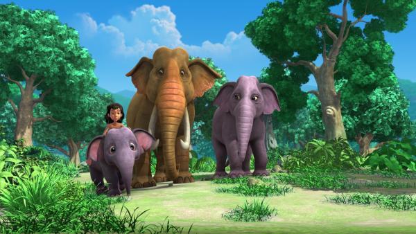 Mogli und Hita (l.) haben die Elefanteneltern zur Verstärkung geholt - gemeinsam suchen sie im ganzen Dschungel nach Appu, dem Elefantenjungen. | Rechte: ZDF/DQ Entertainment
