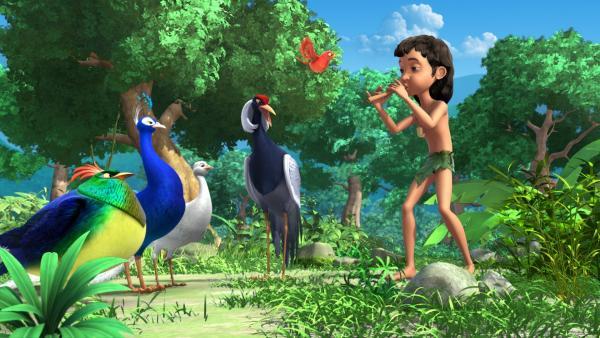 Mogli (r.) ist mit seiner Flöte und Darsi (m.) im Dschungel unterwegs, als er auf die vier großen Vögel trifft, die sich darum streiten, wer der Schönste von ihnen ist.   Rechte: ZDF/DQ Entertainment
