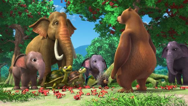 Balu (r.) fragt die anderen Tiere, wo Mogli und Baghira sind. | Rechte: ZDF/DQ Entertainment