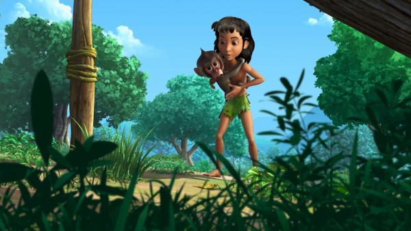 Der kleine Affe Moky ist Moglis größter Fan. Er möchte gern so werden wie Mogli und ahmt ihn in allem nach. | Rechte: ZDF/DQ Entertainment