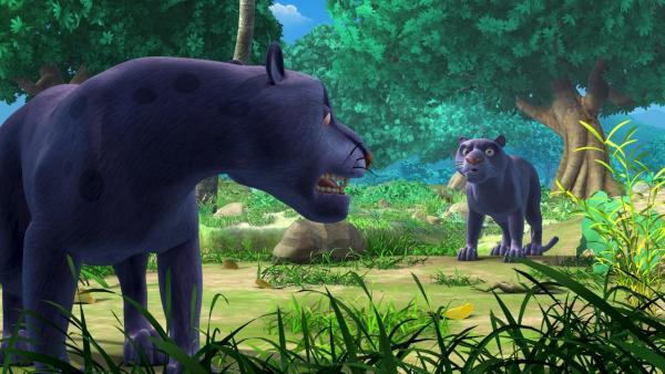 Wer ist wer? Baghira begegnet dem gefährlichen Panther Kala. | Rechte: ZDF/DQ Entertainment