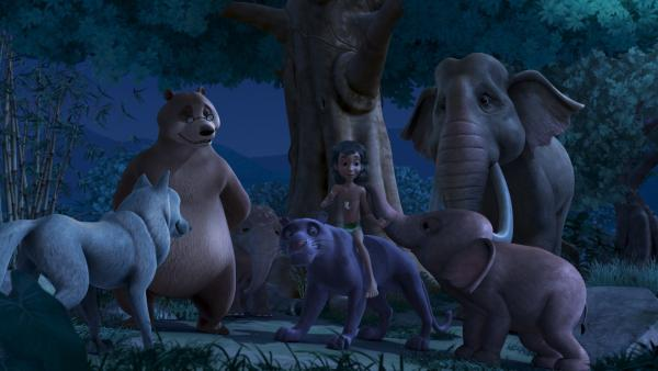 Mogli und Baghira haben herausgefunden, wer hinter dem Schwarzen Schatten steckt. Zusammen mit Balu, Rakscha und den Elefanten feiern sie ihren Erfolg. | Rechte: ZDF/DQ Entertainment