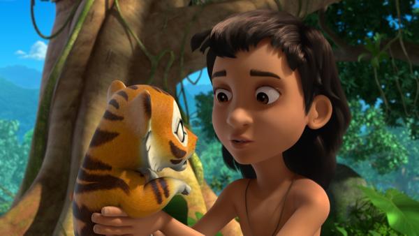 Mogli versucht Chota, dem kleinen Tiger, eindringlich klarzumachen, dass es hilfreich ist, Balus Unterricht aufmerksam zu folgen. | Rechte: ZDF/2009(c) DQ Entertainment