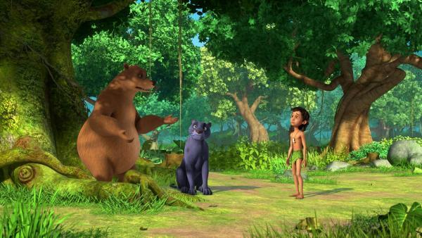Balu, Baghira und Mogli sind entsetzt: Ihr Schlafbaum ist von einem Pilz befallen! Balu will  ein Gegenmittel suchen und Mogli einen Ersatz-Schlafplatz. | Rechte: ZDF/2009(c) DQ Entertainment