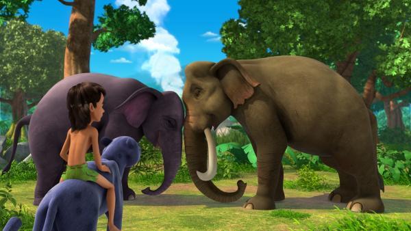 Ein merkwürdiger Rauch hat die Tiere, die sich in Bodennähe aufgehalten haben, betäubt. Mogli und Baghira, die zuvor beide auf einem Baum waren, finden das schlafende Elefanten-Ehepaar Hathi und Gayini. Mogli will das Geheimnis, das hinter dem Rauch steckt, lösen. | Rechte: ZDF/2009(c) DQ Entertainment