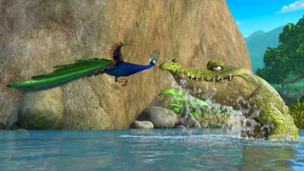 Der Pfau Pula hat behauptet, er könne gut und locker über den Fluss fliegen. Doch da hat er sich getäuscht, denn er schafft es nicht, hoch genug zu fliegen. Als Jakala, das hungrige Krokodil auftaucht, kann ihm nur noch ein bisschen Glück helfen. | Rechte: ZDF/2009(c) DQ Entertainment