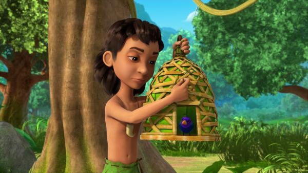 Mogli denkt, er tue etwas Gutes und lässt den Vogel frei. Doch Balu hatte diesen frechen Vogel gefangen, um ihn wieder zum Dorf zu bringen. | Rechte: ZDF/2009(c) DQ Entertainment