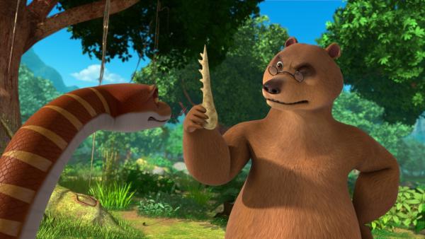 Dieser Kieferknochen, der aussieht wie ein Kamm, ist bei den Tieren im Dschungel sehr gefragt, denn damit kann man sich so schön kratzen. Die Schlange Kaa hätte ihn gern wieder zurück, doch Balu will den Knochenkamm erst einmal untersuchen. | Rechte: ZDF/2009(c) DQ Entertainment