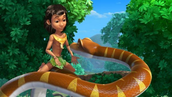 Die Schlange Kaa ist ganz angetan von Moglis Funkelding.   Rechte: ZDF/DQ Entertainment