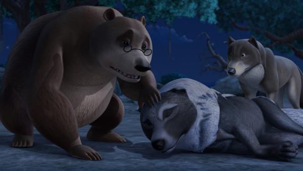 Balu hat Akela, den Rudelführer, zum Ratsfelsen getragen. Die Wölfe sind besorgt, denn Akela wurde von einer giftigen Schlange gebissen.   Rechte: ZDF/DQ Entertainment