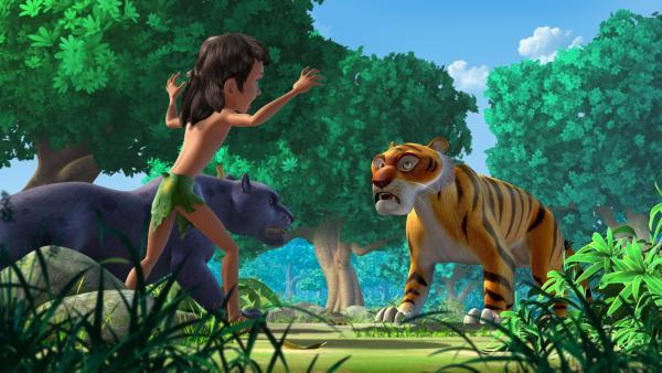 Mogli und Baghira lenken Shir Khan (re.) von dem kranken Büffelkalb ab. So leicht kommt der Tiger nicht an seine Beute! | Rechte: ZDF/DQ Entertainment