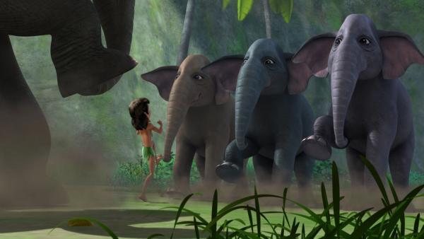 Als Mogli bemerkt hat, dass Shir Khan im Anmarsch ist, versucht er mit  Hilfe der kräftigen Elefantenmütter den schmalen Eingang zum Tal noch rechtzeitig zu verschließen. Durch das Trampeln sollen herunterfallende Felsbrocken den Eingang versperren. | Rechte: ZDF/DQ Entertainment