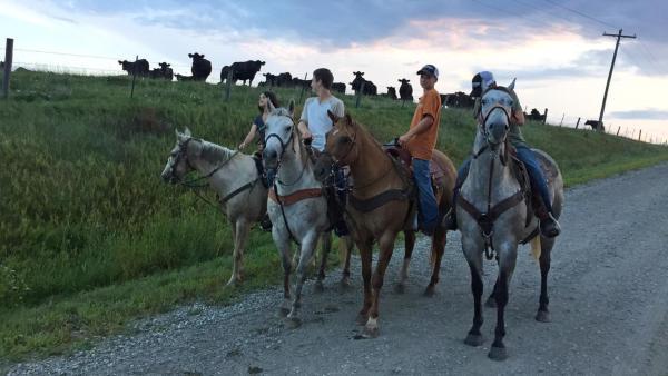 Louisa und Philipp reiten in Iowa auf Pferden | Rechte: ZDF