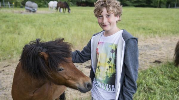 Niko mit Pony | Rechte: ZDF/Ralf Wilschewski