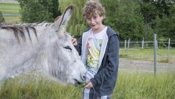 Niko mit einem Esel | Rechte: ZDF/Ralf Wilschewski