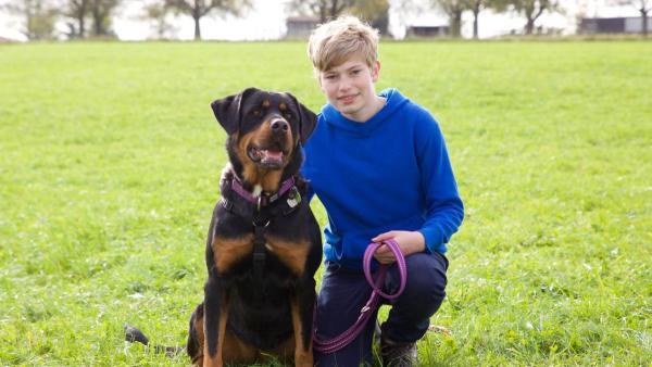 Henrik kniet mit einem Hund auf der Wiese. | Rechte: ZDF