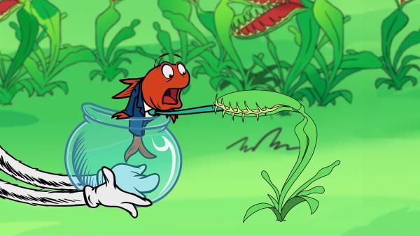 Die Natur ist voller Überraschungen: eine fleischfressende Pflanze hat es auf Fisch abgesehen.   Rechte: KiKA/Collingwood O'Hare Prod./Portfolio Entertain./Random House Children E./Treehouse TV