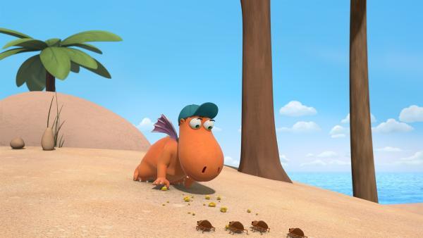 Kokosnuss will die Käfer mithilfe von Oskars Käsesandwich nun endlich vom Feuergras weglocken. | Rechte: ZDF/Caligari Film
