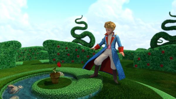 Der kleine Prinz kann es nicht glauben: ist das wirklich seine geliebte Rose – oder nur ein Trugbild? | Rechte: WDR/ARD